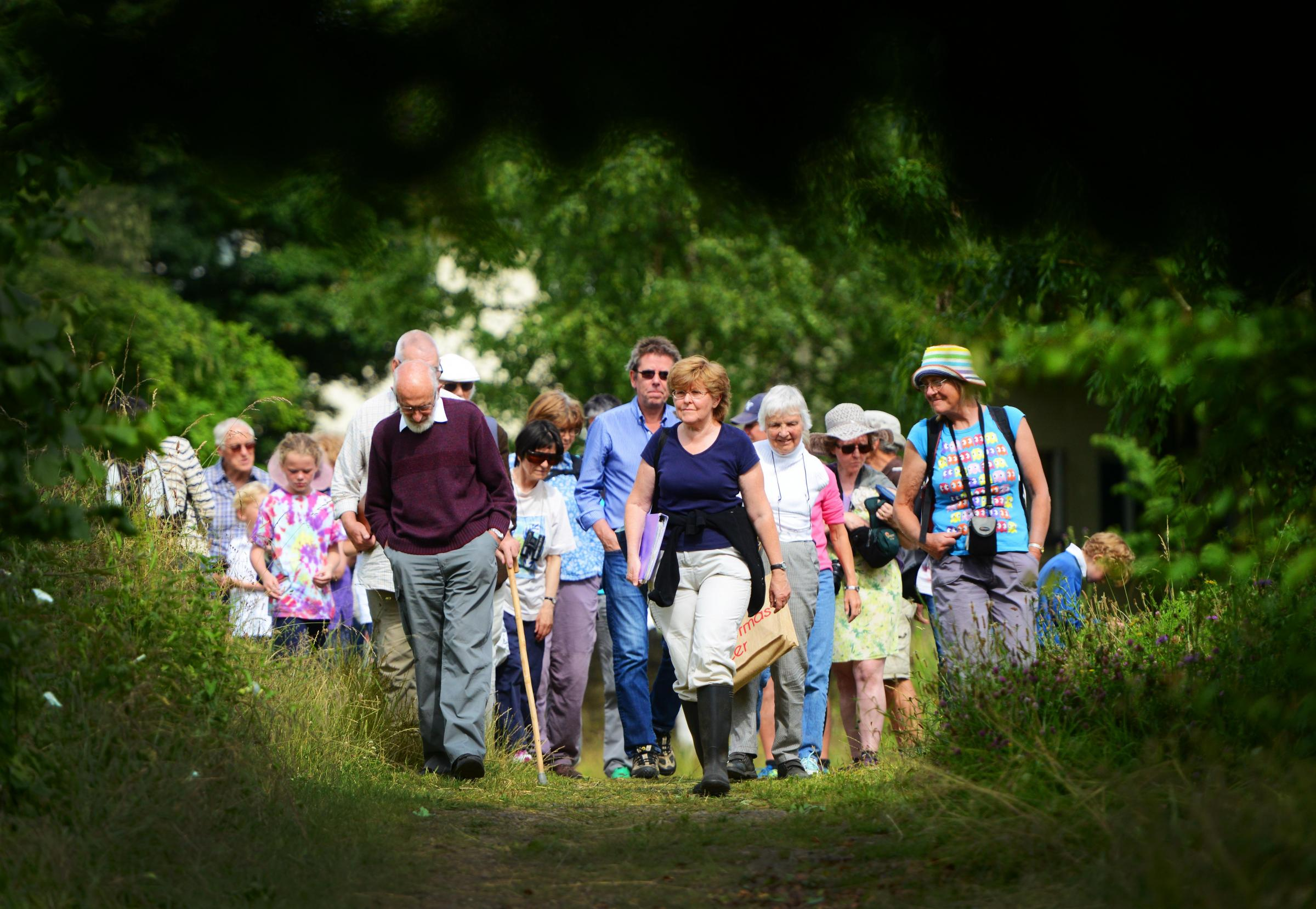 Friends of Lye Valley chairwoman Dr Judy Webb leads a guided walk through the nature reserve on Wednesday, July 6, 2016.