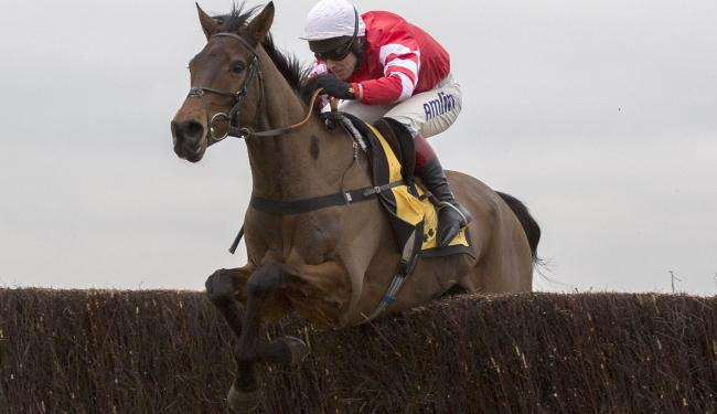 Coneygree has been withdrawn from the King George VI Chase Picture: Julian Herbert/PA Wire