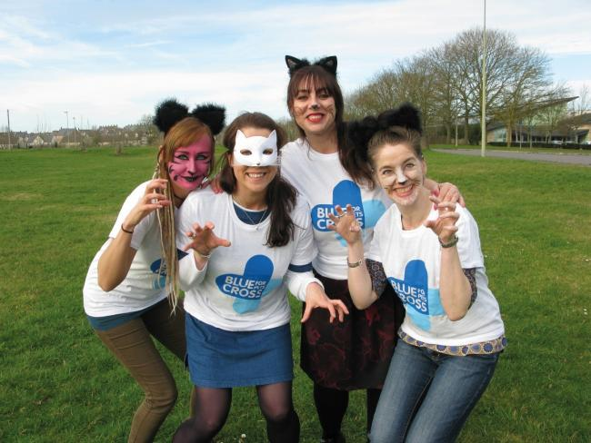 Blue Cross supporters don cat costumes