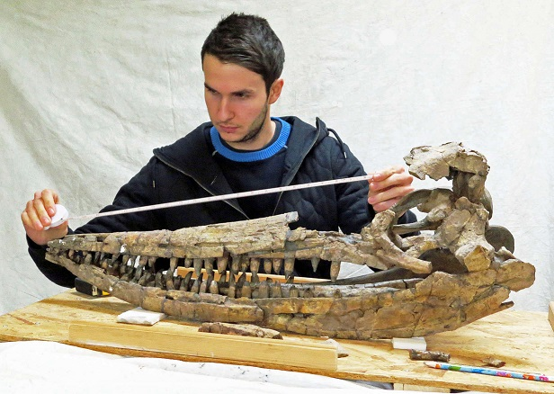 Dinosaurs and Ichtyosaurs of Britain, The ASP Christmas Lecture