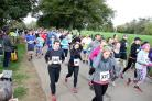 Runners start the Woodstock and Kidlington Rotary Club 10k event in the grounds of Blenheim Palace yesterday
