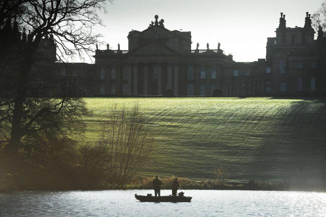 Members of The Oxford Mail Camera Club joined chief photographer Ed Nix to enjoy a clear frosty morning for a feast of photographic opportunities at Blenheim Palace..Pic by Jon Lewis..25.11.2017..