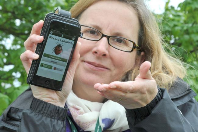 Dr Helen Roy from the Centre for Hydrology and Ecology with a 10-spot ladybird and her ladybird app. Picture: Denis Kennedy