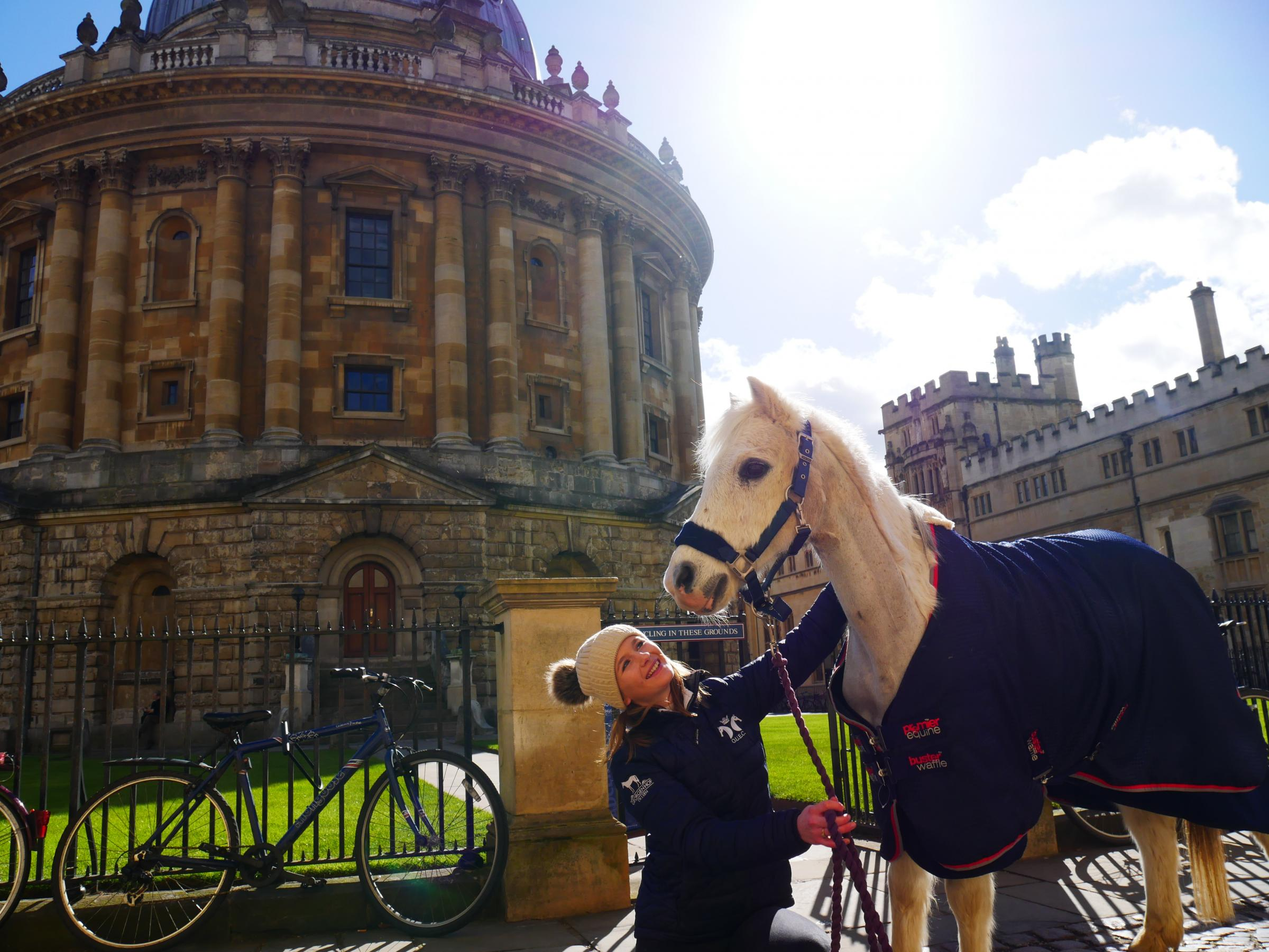 Pony duo charm shoppers and students in Oxford city centre