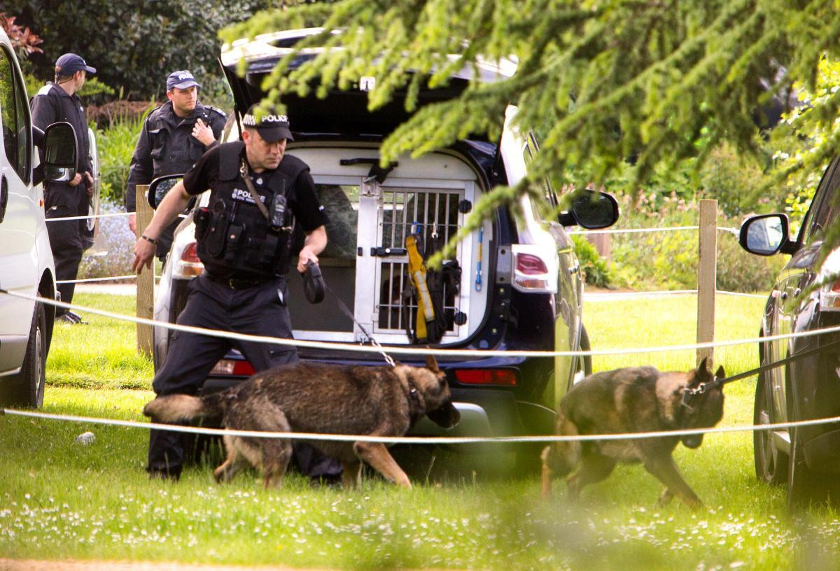 Police dog handlers in action in 2015