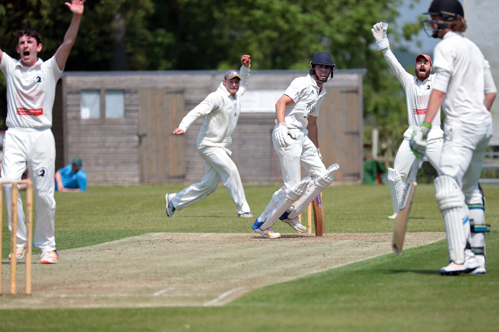Great Tew's captain Harry Smith goes for a run out, while bowler Lawrence Brock and keeper Robbie Catling appeal for lbw during Great Tew's victory over Amersham Picture: Ric Mellis