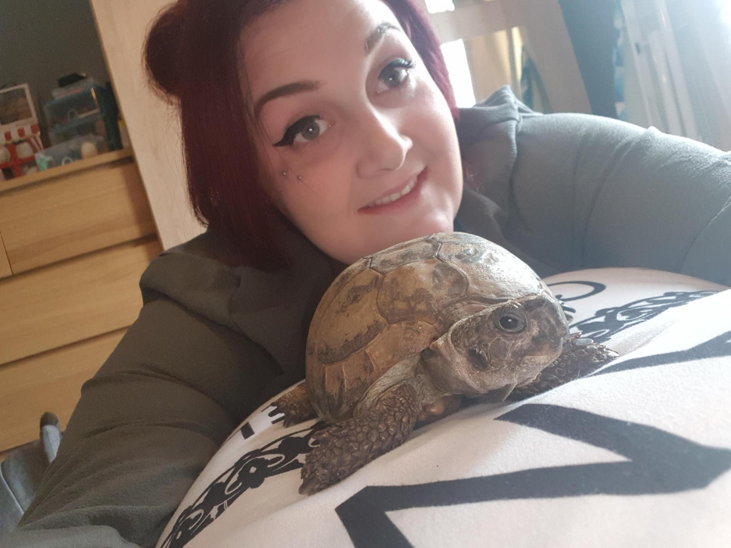 MISCHIEVOUS: Elderly tortoise Toby with his rescuer. Picture: Charlotte Townsend.