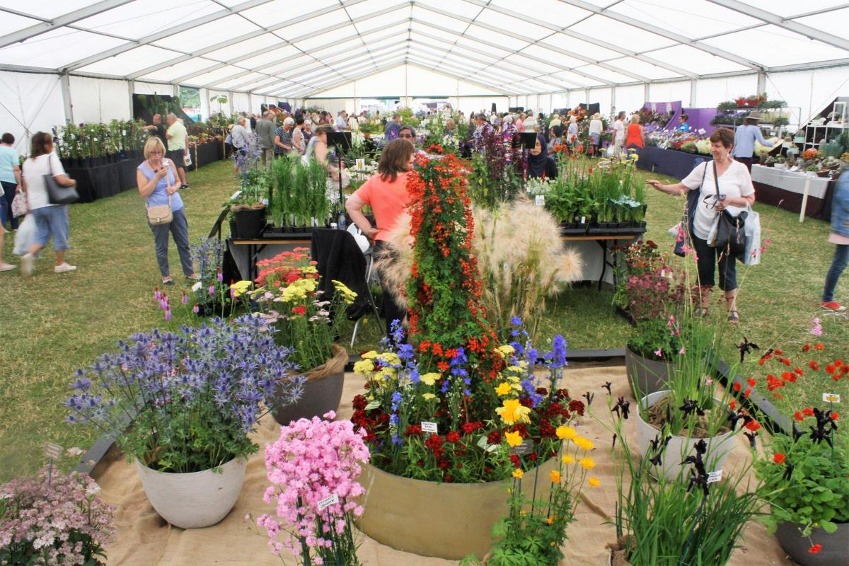 In pictures blenheim palace flower show 2018 oxford mail in pictures blenheim flower show is blossoming into one of the best izmirmasajfo