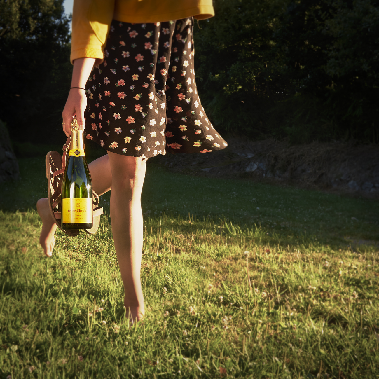 Festival tipple: Sup Veuve Clicquot Champagne at Wilderness