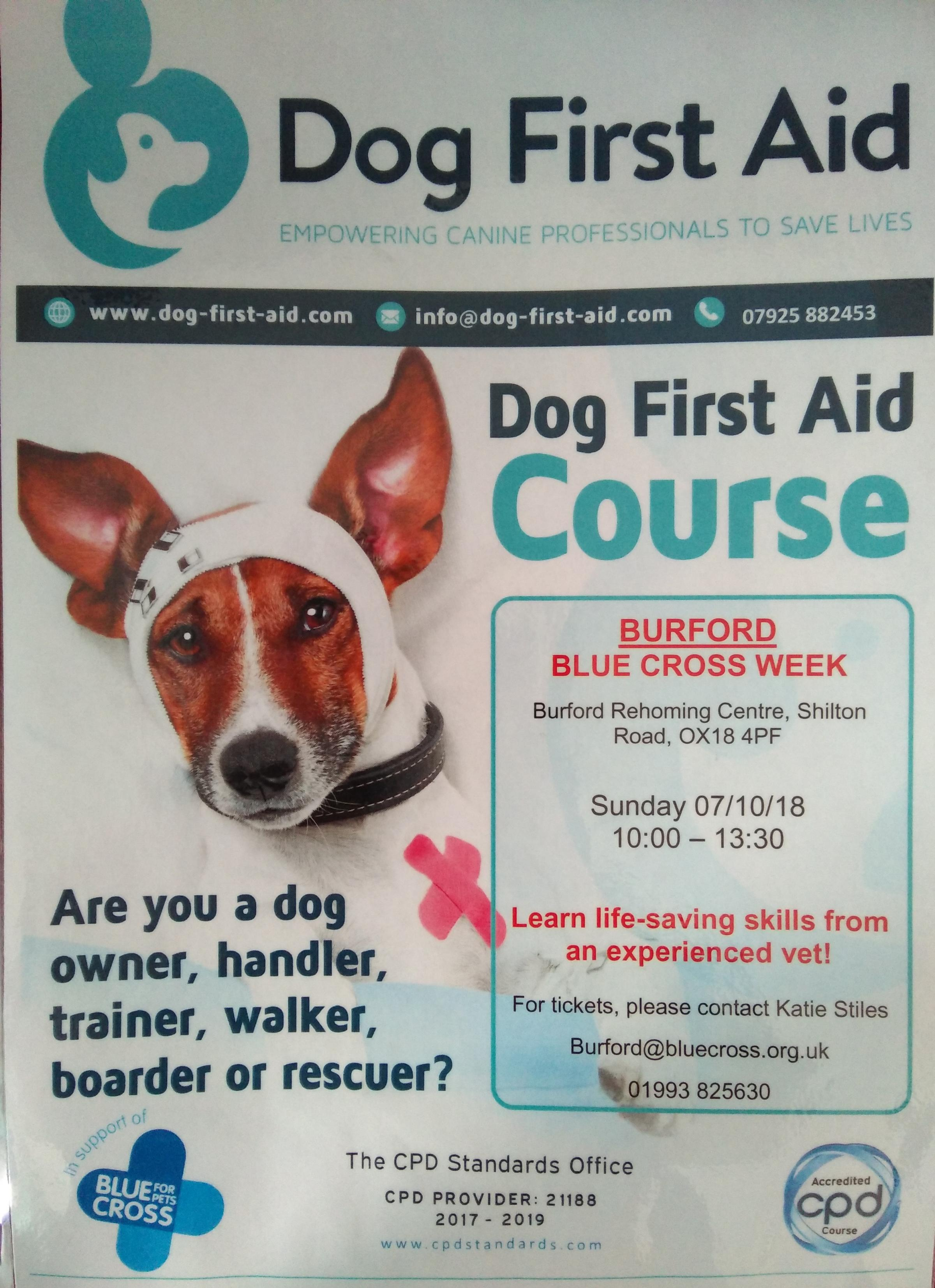 Blue Cross Week Burford Dog First Aid