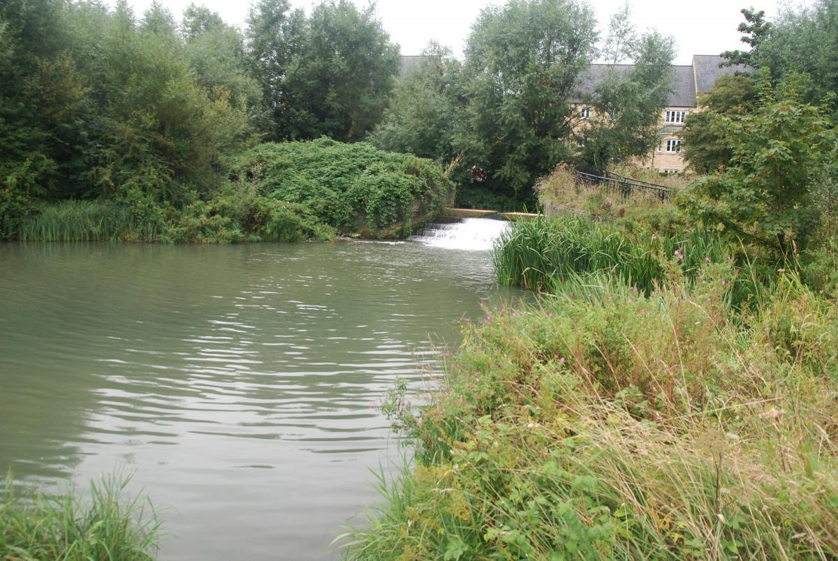 The River Windrush in Witney