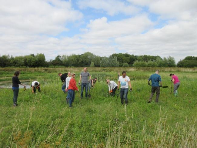 Environment Agency volunteers doing some practical management work at Cutteslowe Ponds. Picture: Freshwater Habitats Trust