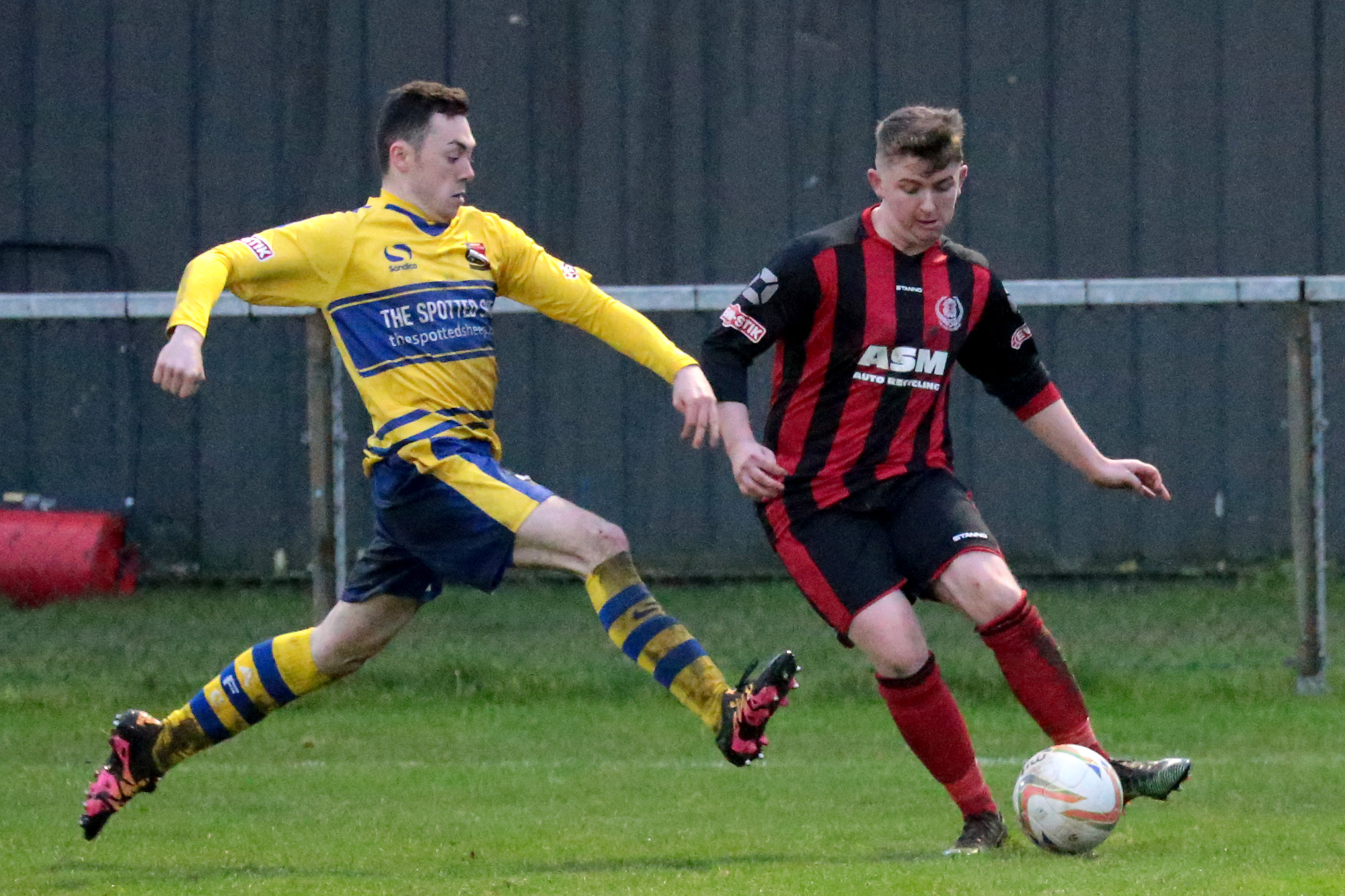 David Lynn (right) scored in Thame United's 3-1 win over AFC Dunstable Picture: Ric Mellis