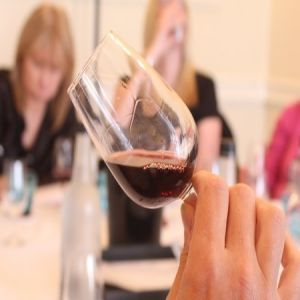 Oxford Wine Tasting Experience Day: 'Vine to Wine'