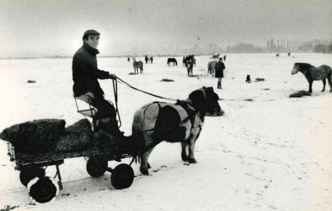 Remember When - Snow in Port Meadow 1981