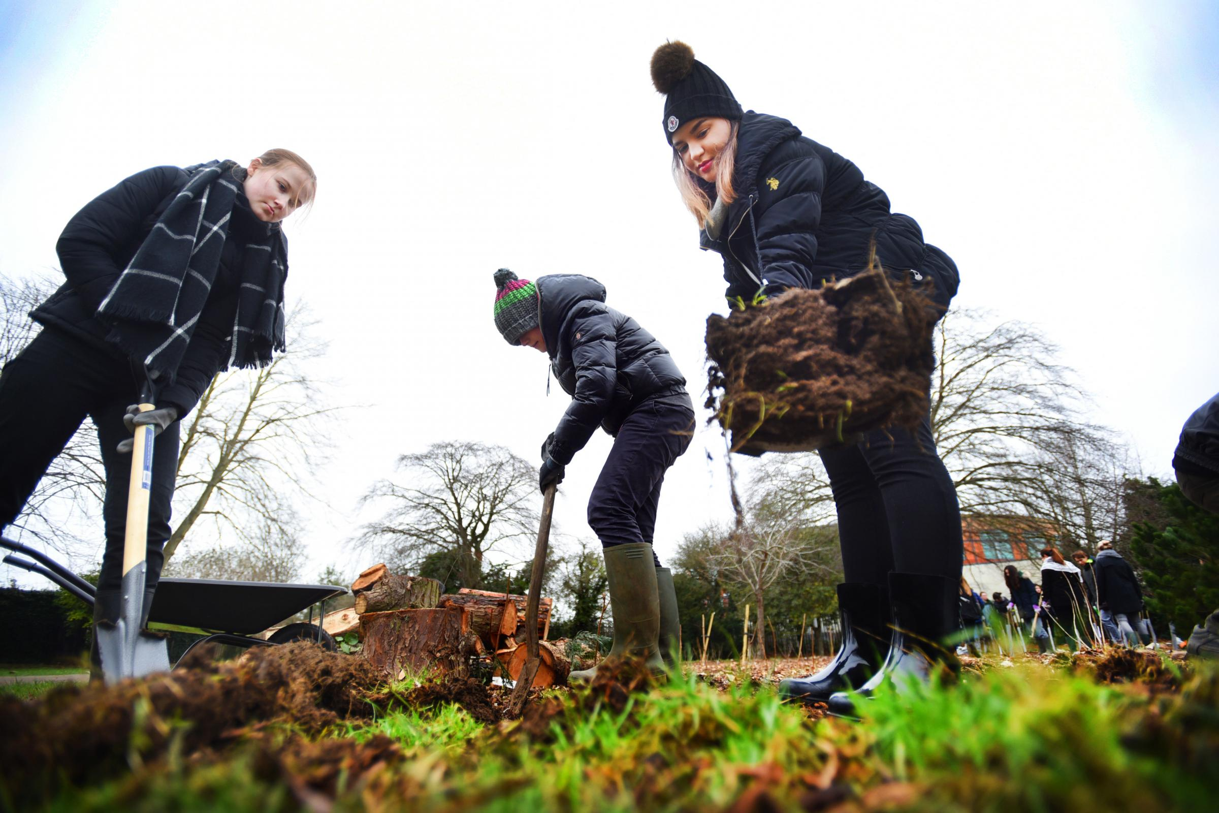 File photo of volunteers planting trees in the forest garden at Florence Park, East Oxford. Picture: Richard Cave