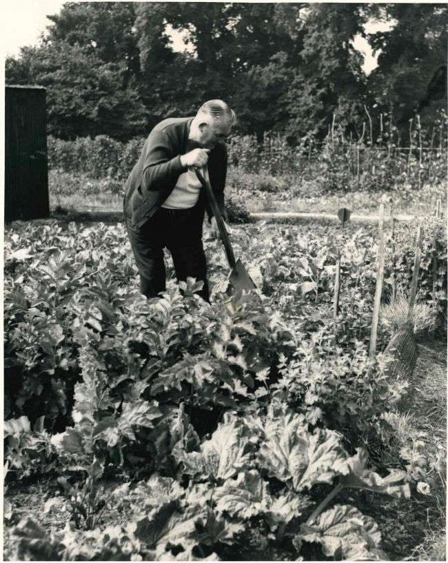 TIMES PAST: Allotment holders hid behind sheds to patrol the land for vandlas in August 1970