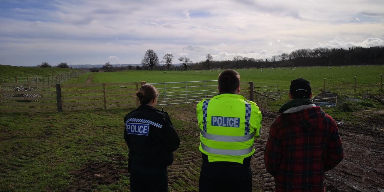 Police investigating after the sheep was killed. Pic: TVP South Oxon and Vale of White Horse