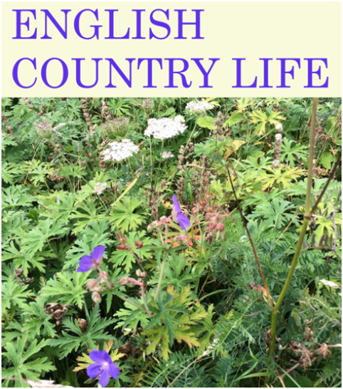 Music at The Limes in Standlake: English Country Life