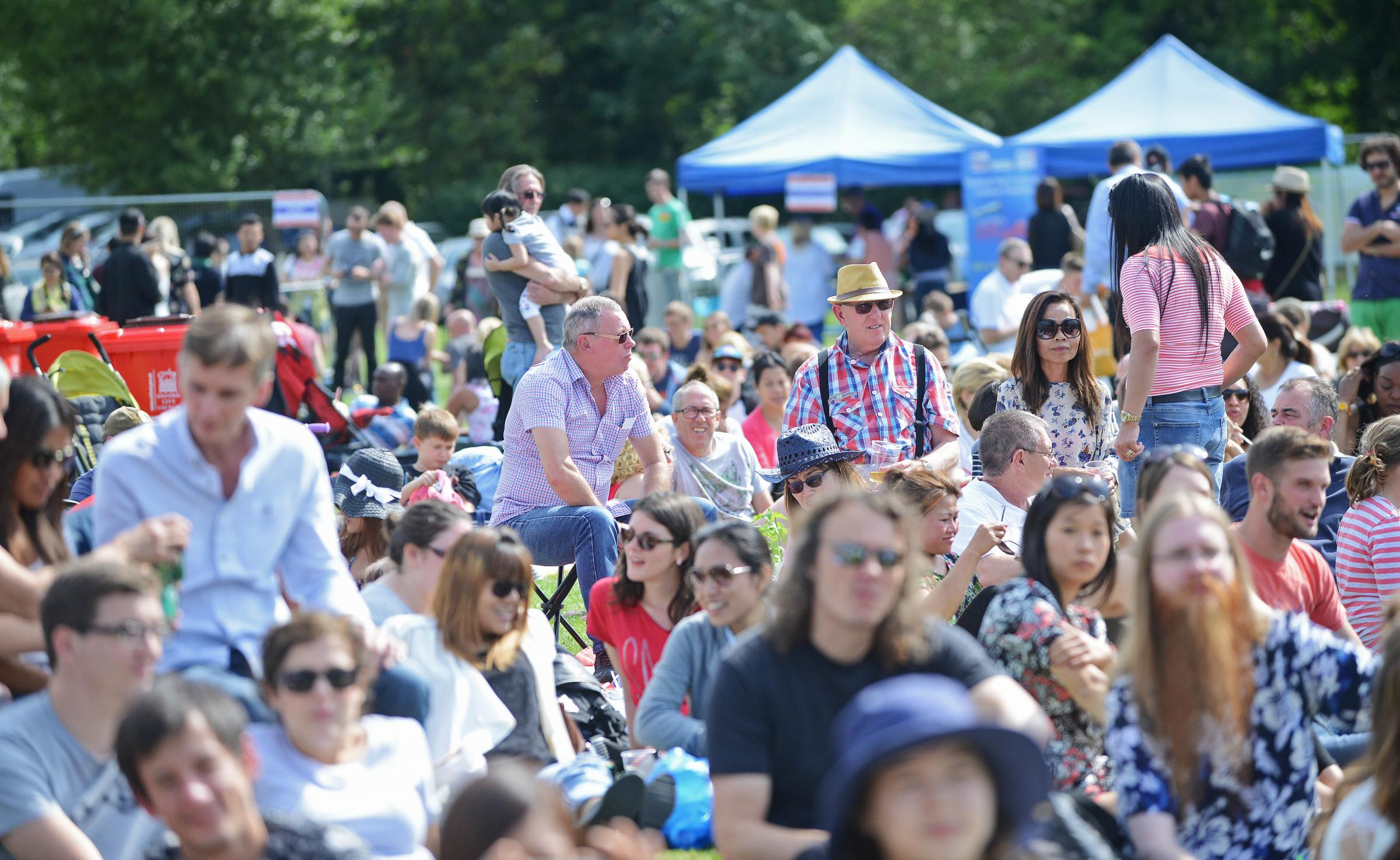 World food and 'mini farm' at one-day Oxford family festival