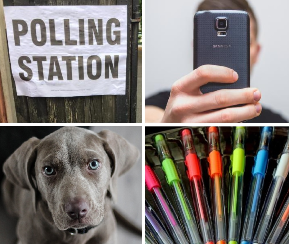 Polling station rules - seflies, dogs, voting
