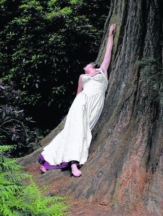 TREE HUGGER: but if you go down to the woods today...