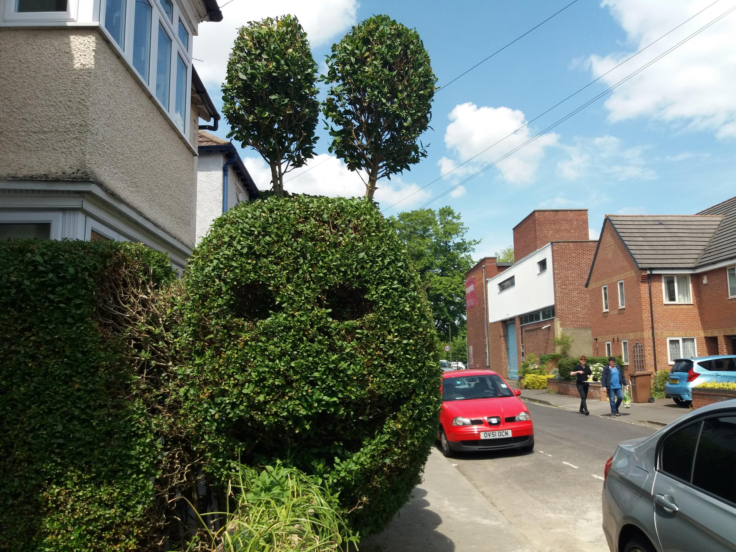 Oxford hedge caterpillar is topiary masterpiece