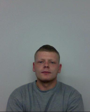 Thug jailed for 'bullying' campaign of violent abuse on partner